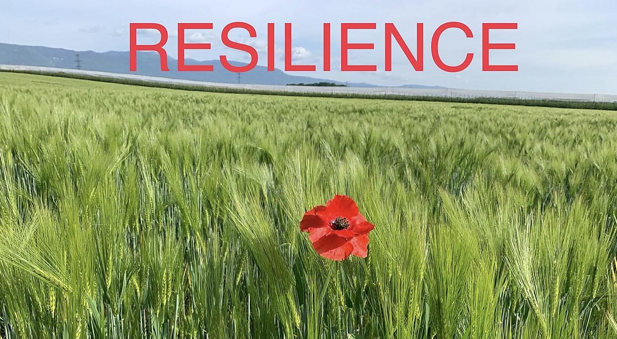 10 questions pour tester votre résilience